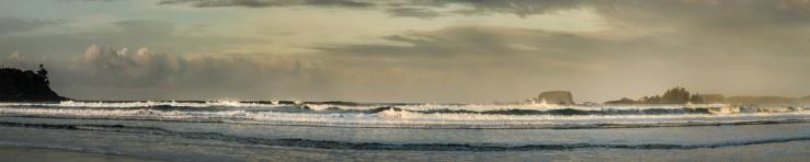 cox bay surf 1x5