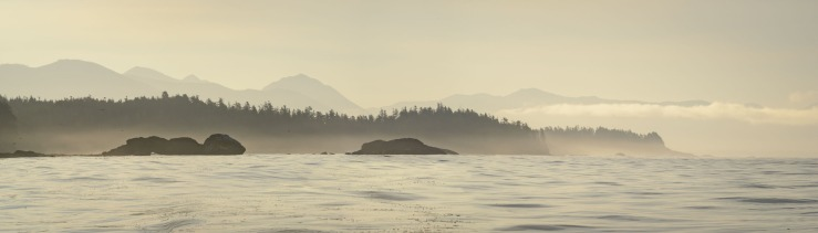18495 x 5284 pixel image of the west coast of Nootka Island during sunrise