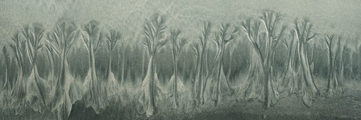 sand trees 1x3