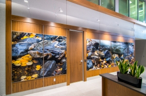 Very large aluminum panel image in lobby