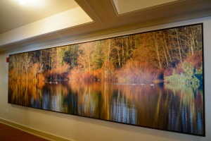 sixteen foot canvas image