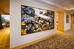 120 inch stretched giclee canvas