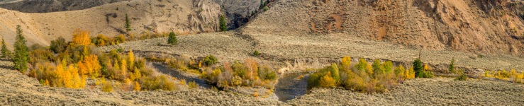yellow trees along a river in a dry valley