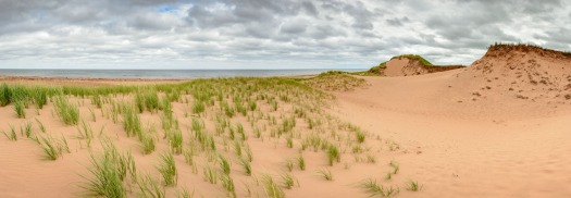 Endless sand dunes on Prince Edward Islands North Shore.