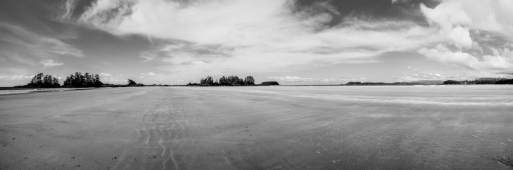 Chesterman beach in Black and White.