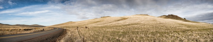 rolling grass covered hills in central oregon.