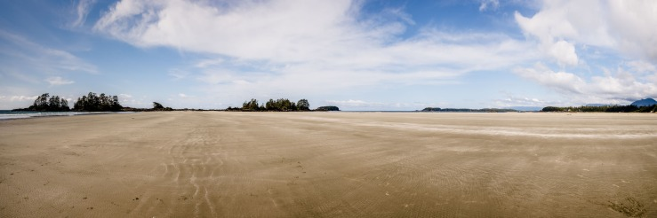 expansive sand at chesterman beach in tofino
