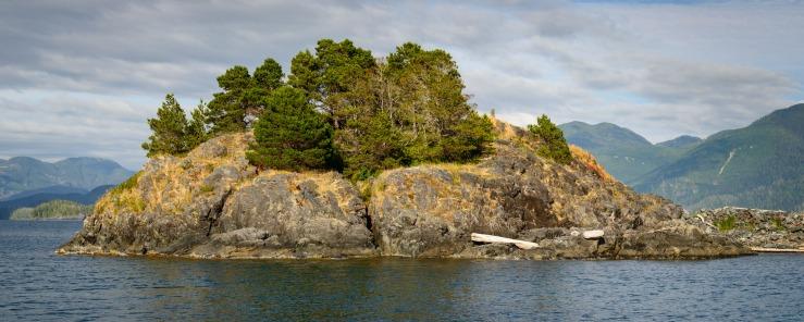 rocky island in Nootka Sound, bc