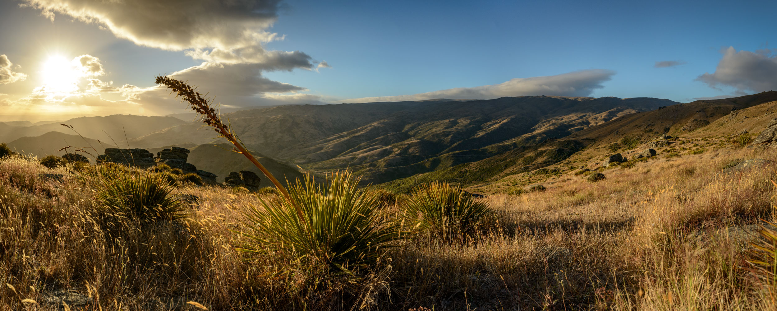 The sun rises over the spear grass covered hills of Central Otago