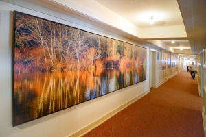 16 foot canvas image