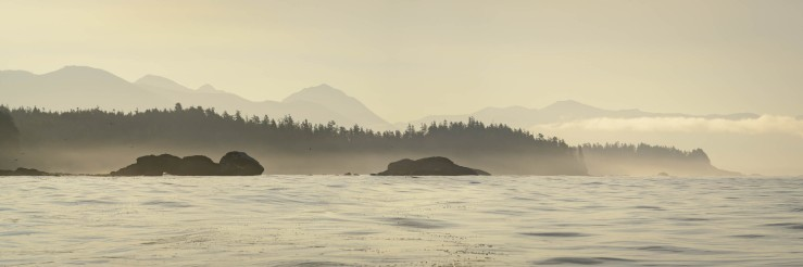 Sunrise and fog on the west coast of Vancouver Island